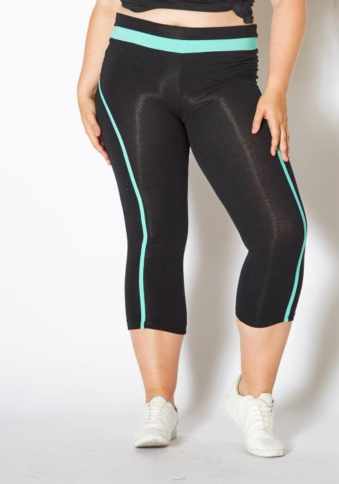 Asoph Plus Size Single Stripe Leggings