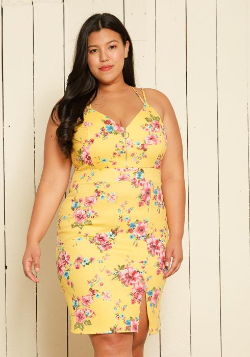 Asoph Plus Size Floral Dress