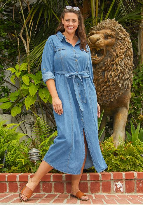 Asoph Plus Size Button Up Denim Maxi Dress