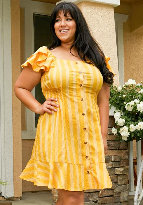 Asoph Plus Size Stripe Button Up Sun Dress