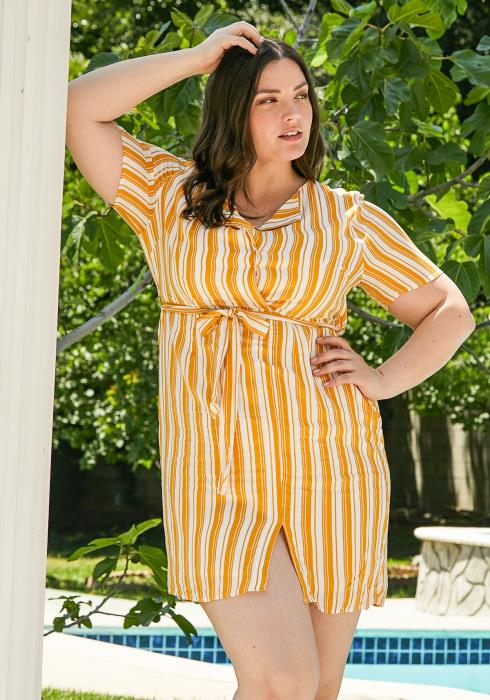 Asoph Plus Size Stripe Mini Dress