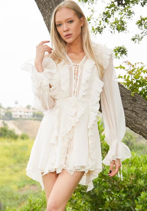 Tansy Ruffle Sheer Dress