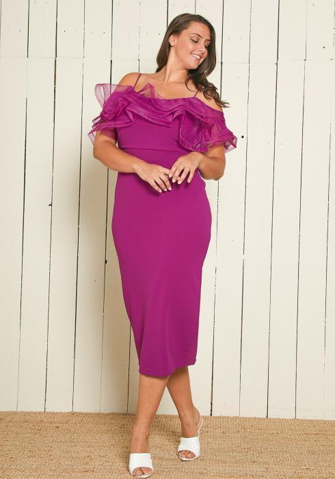 Asoph Plus Size Mesh Ruffle Cocktail Dress