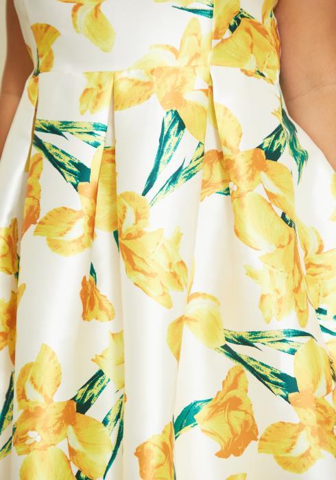 Asoph Plus Size Floral Print Party Dress