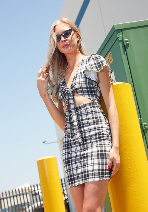 Tansy Plaidful Tie Front Dress
