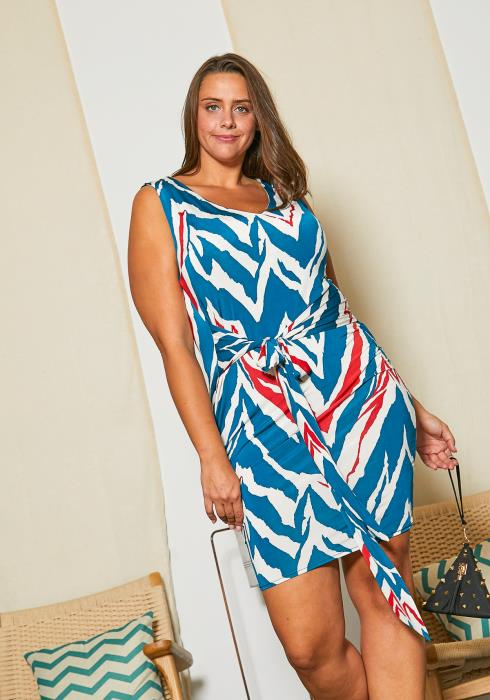 Asoph Plus Size Chevron Printed Dress