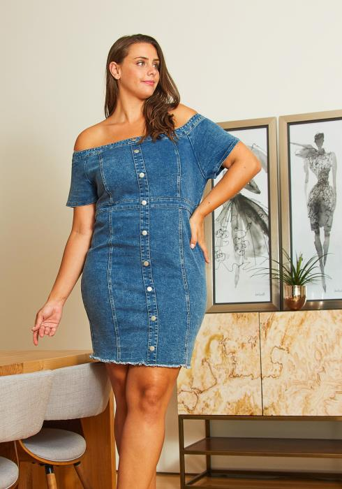 Asoph Plus Size Off Shoulder Denim Dress