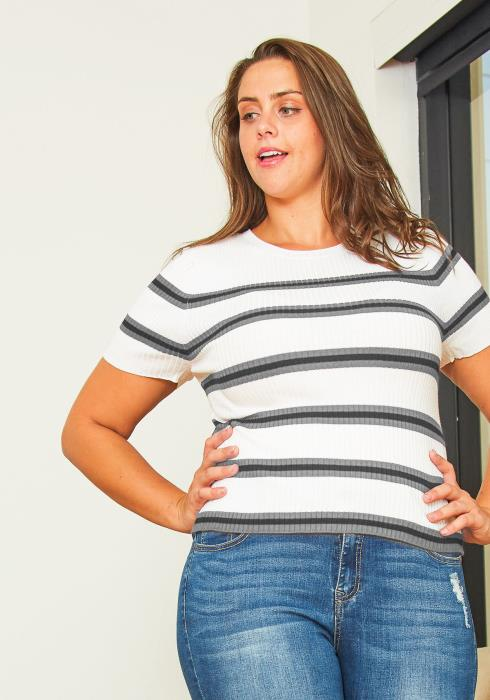Asoph Plus Size Stripe Fitted Top