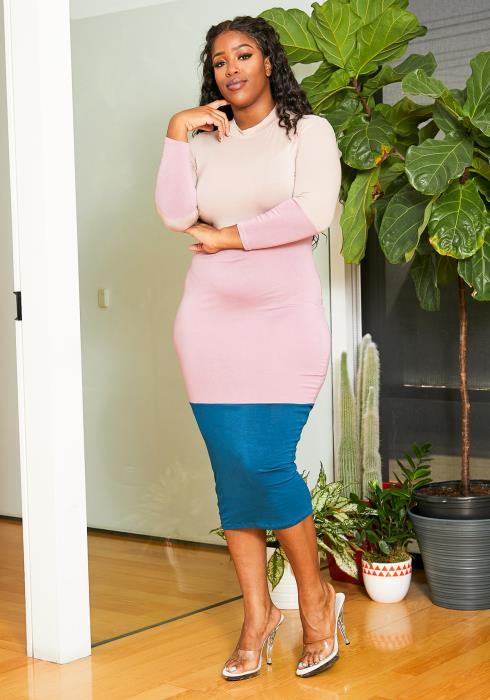 Asoph Plus Size Color Block Bodycon Dress
