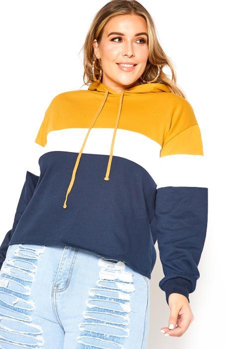 Asoph Plus Size Color Block Hoodie Sweater
