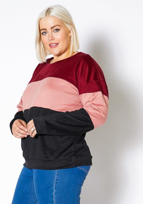 Asoph Plus Size Womens Color Block Round Neck Sweater Top