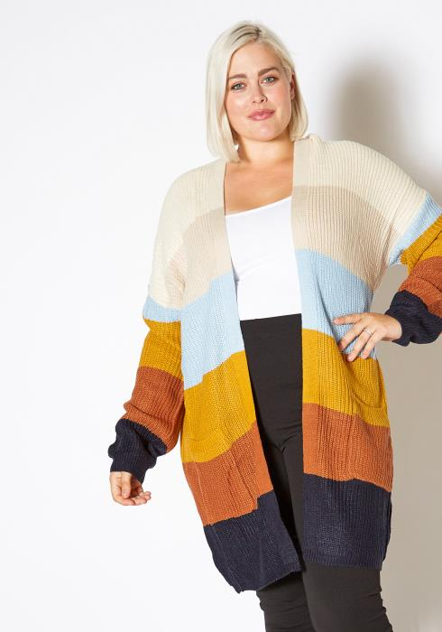 Asoph Plus Size Womens Fall Season Color Block Open Front Cardigan