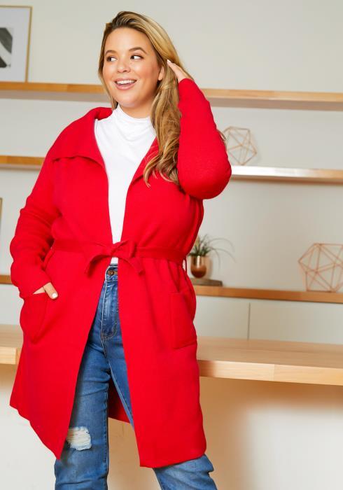 Asoph Plus Size Warm & Thick Notch Collar Womens Cardigan