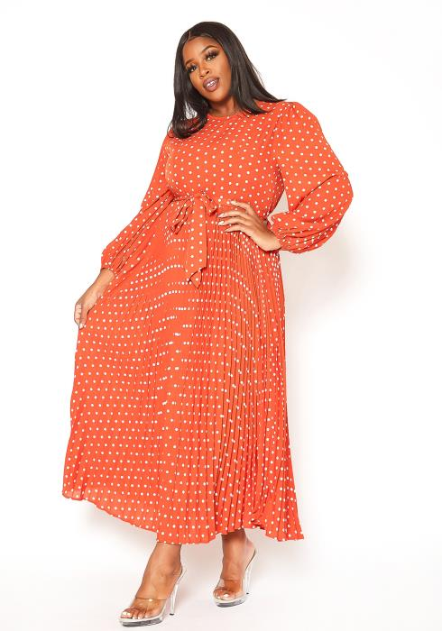 Asoph Plus Size Polka Dot Pleated Fit & Flare Maxi Dress
