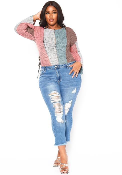 Asoph Plus Size Front Distressed Light Wash Jeans